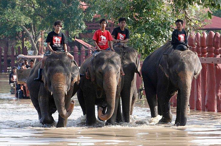 Лопбури, Тайланд