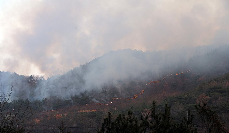 Лесной пожар на горе острова Енпхендо