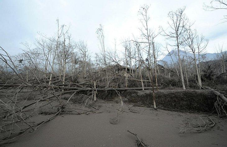 Разрушения после извержения вулкана Мерапи в деревне Калиадем