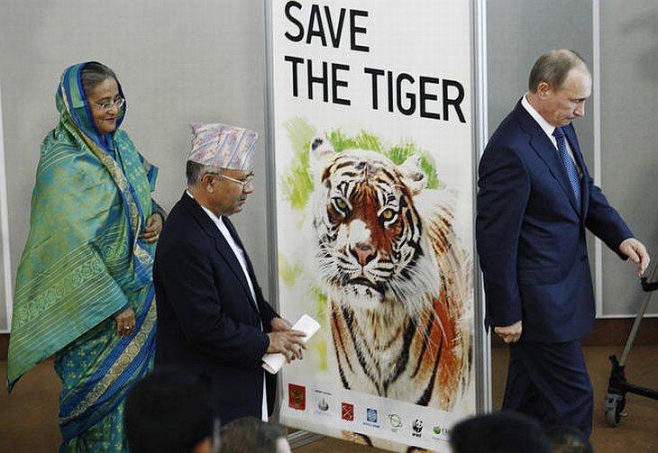 Премьер-министр России Владимир Путин, Премьер-министр Непала Мадхав Кумар (в центре) и премьер-министр Бангладеш Шейх Хасина на Международном тигрином форуме в Санкт-Петербурге