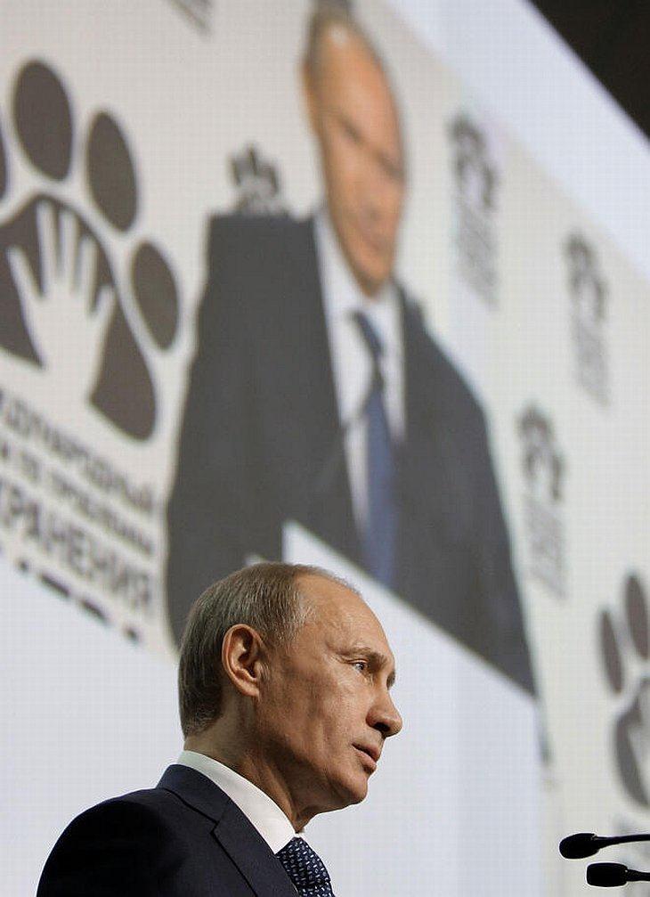 Премьер-министр России Владимир Путин назвал голливудского актера Леонардо ди Каприо «настоящим мужиком»