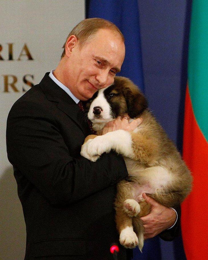 Премьер-министру Владимиру Путину в Софии подарили щенка