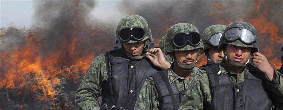 Марихуана в Мексике