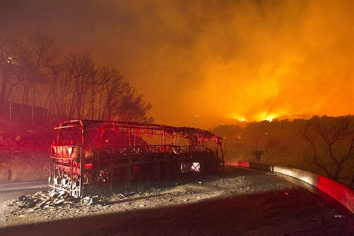 Крупнейший за всю историю страны лесной пожар начался 2 декабря 2010 в районе горной гряды Кармель недалеко от израильского города Хайфа