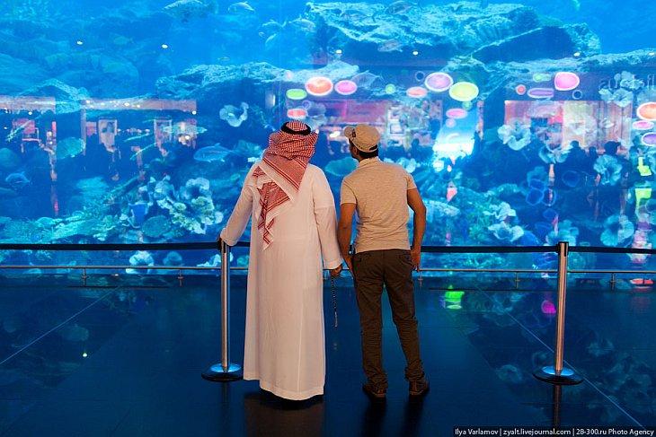 Крупнейший в мире аквариум в ТЦ в Dubai Mall