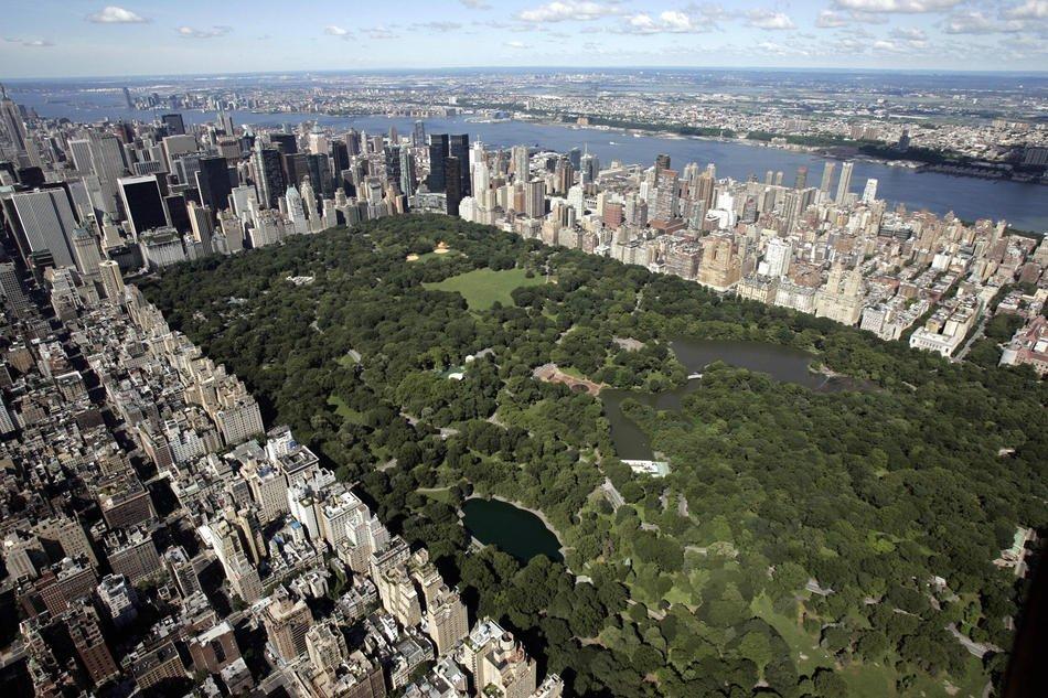 Вид на Центральный парк Манхэттена