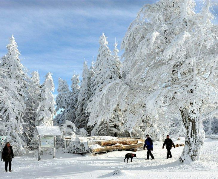 Заснеженная Европа в начале декабря