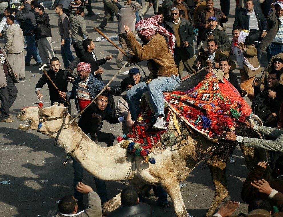 Сторонники Хосни Мубарака на верблюдах и лошадях с дубинками и камнями нападают на оппозиционеров