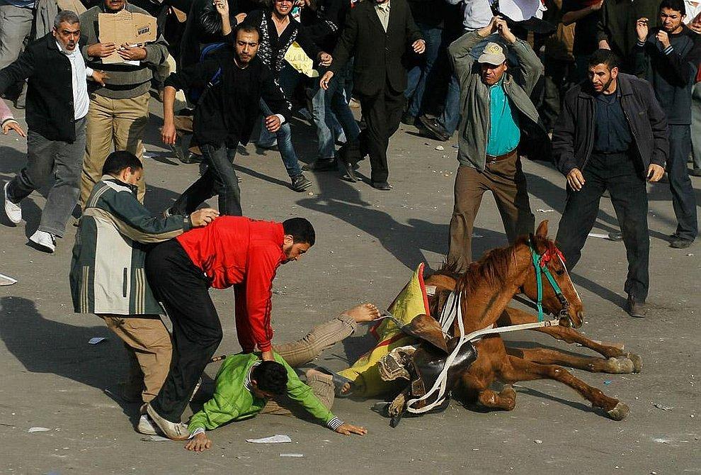 Сторонник президента Хосни Мубарака падает с коня на площади Освобождения в Каире