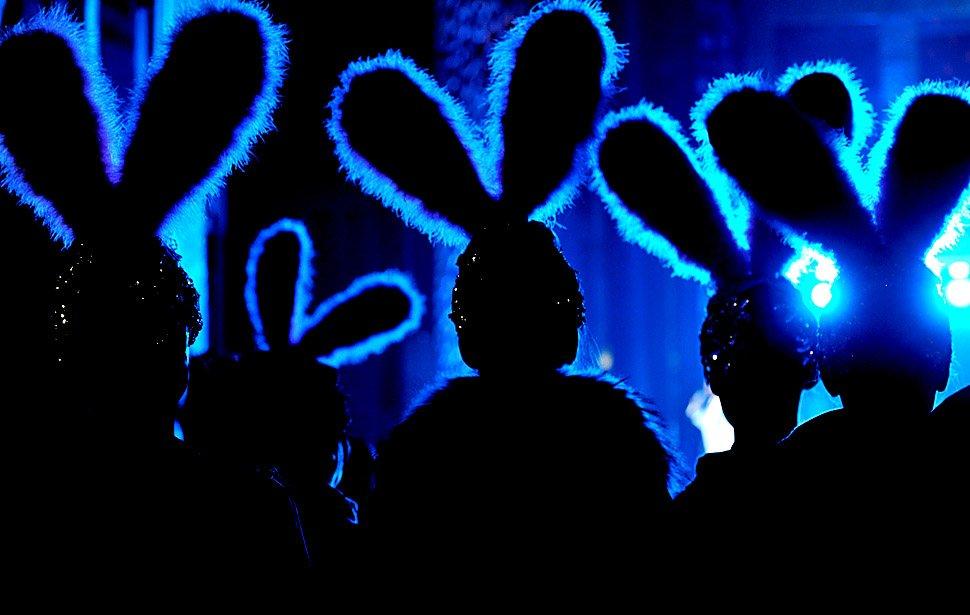 Актеры в костюмах кролика