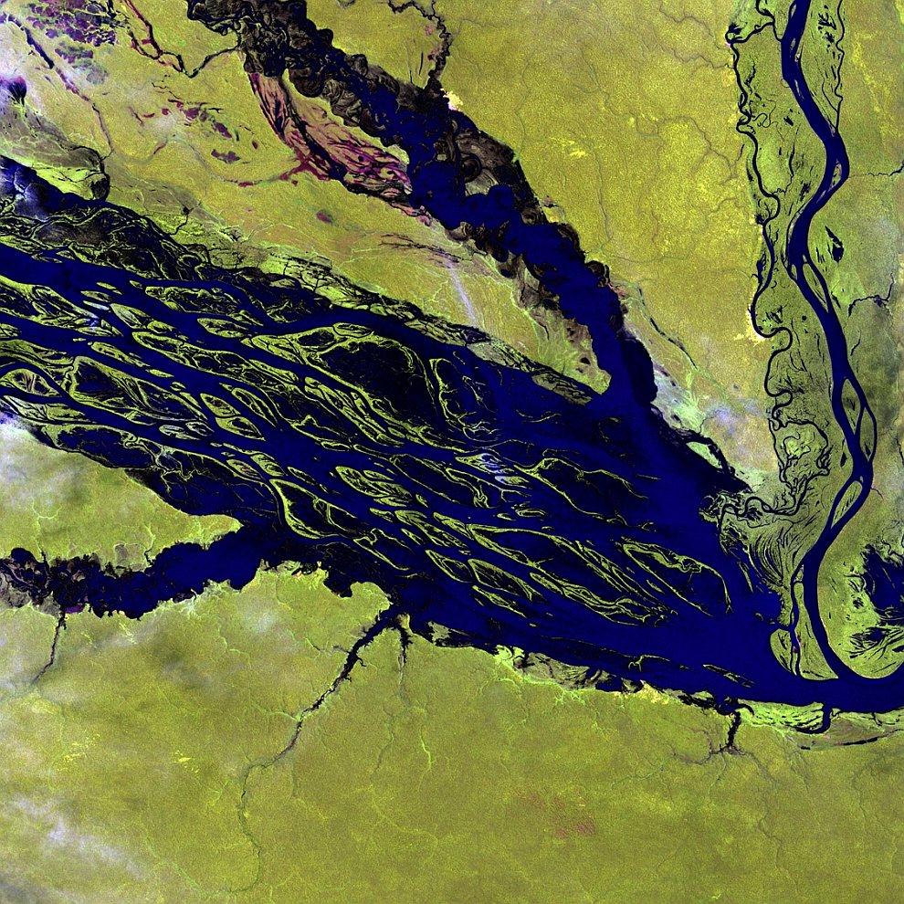 Река Рио-Негро — крупнейший приток Амазонки