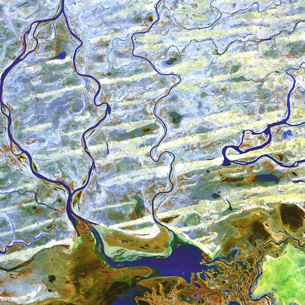 Дельта реки Нигер в Африке
