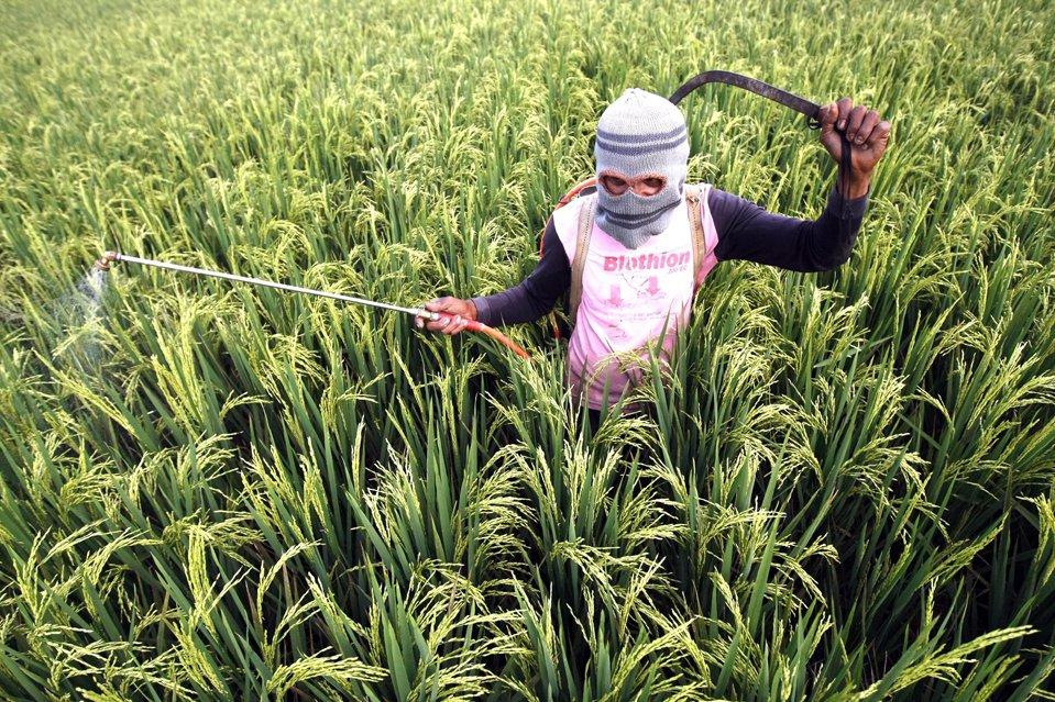 Экстравагантный фермер распыляет средство от насекомых