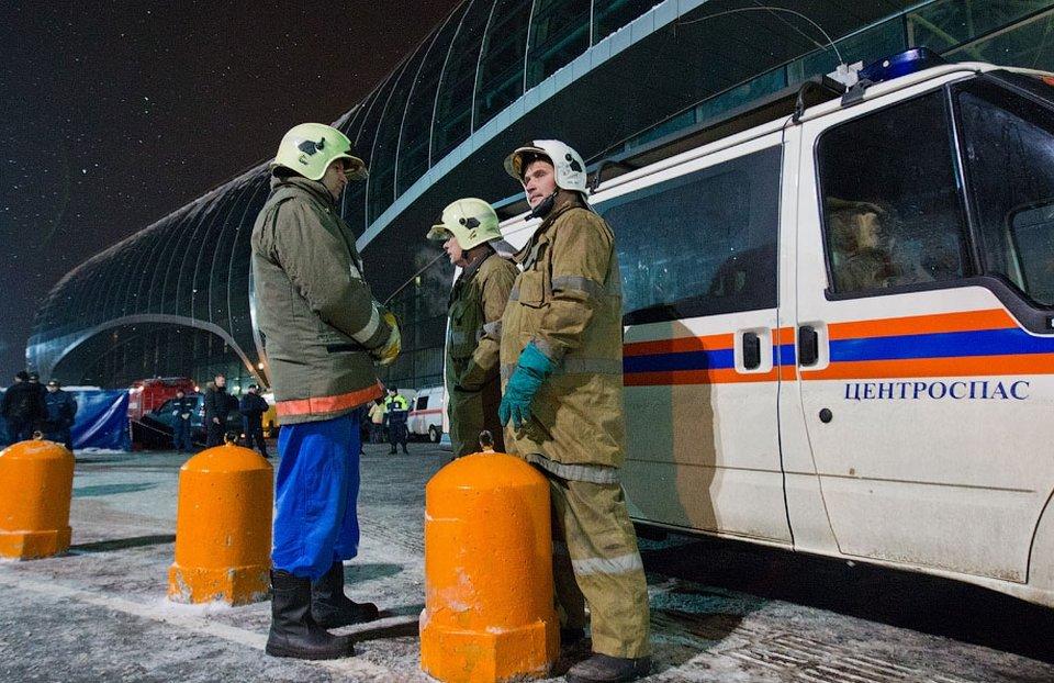 Раскрыто преступление, совершенное 24 января в аэропорту Домодедово