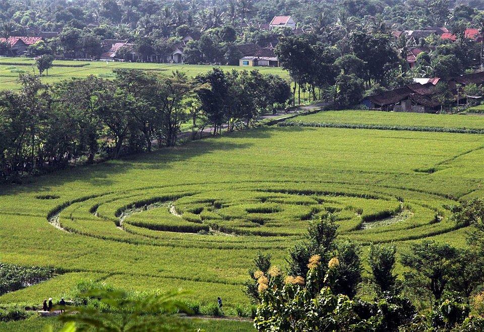 НЛО в Индонезии