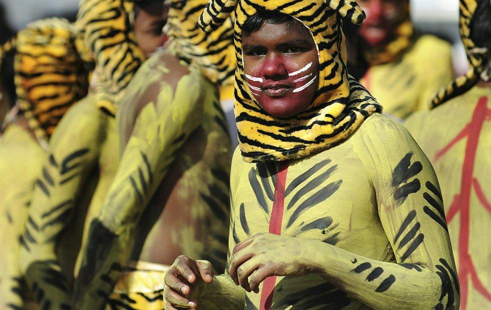 Индийские школьники в костюмах тигров, Бангалор