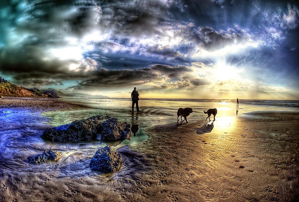 На Марсе. Человек с собаками