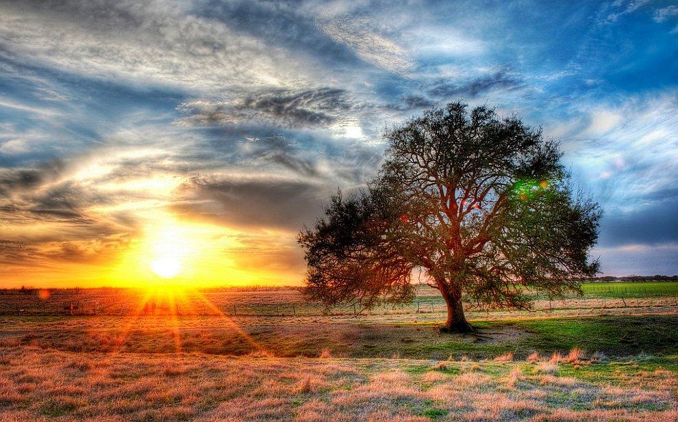 Закат на техасской ферме