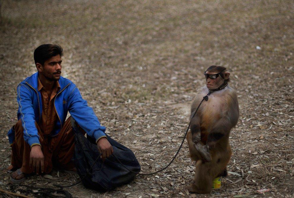 Бродячие артисты на обочине дороги в Исламабаде