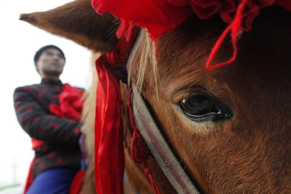 Жених скачет к своей невесте в провинции Хэнань, Китай