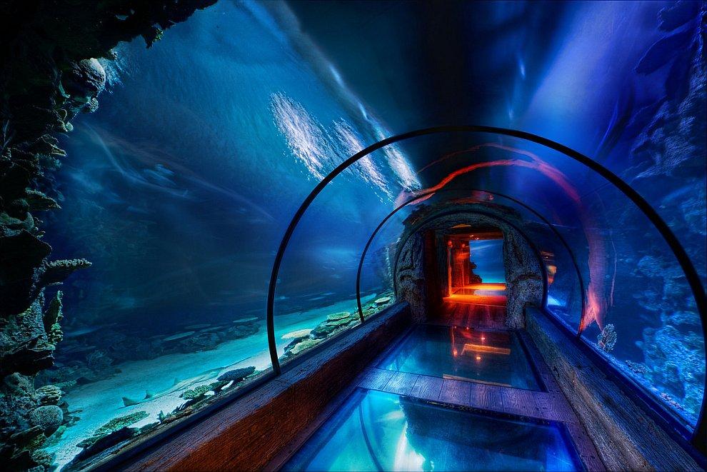 Подводный пассаж