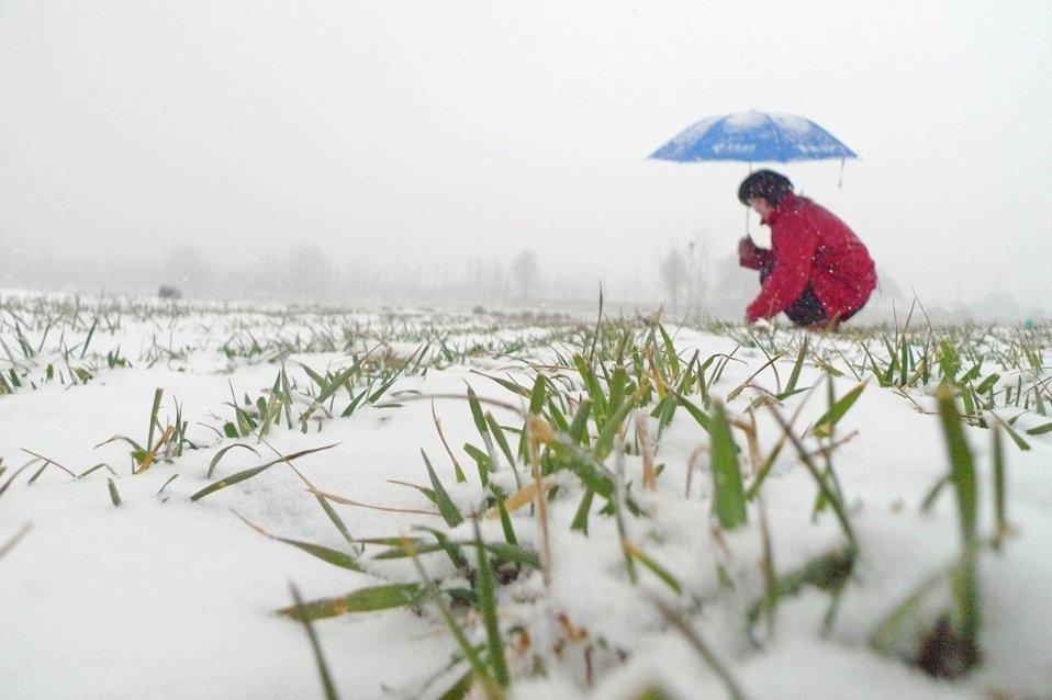 В провинции Шаньдун, Китай прошел сильный снегопад