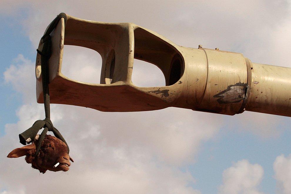 Война в Ливии. Операция «Одиссея. Рассвет»
