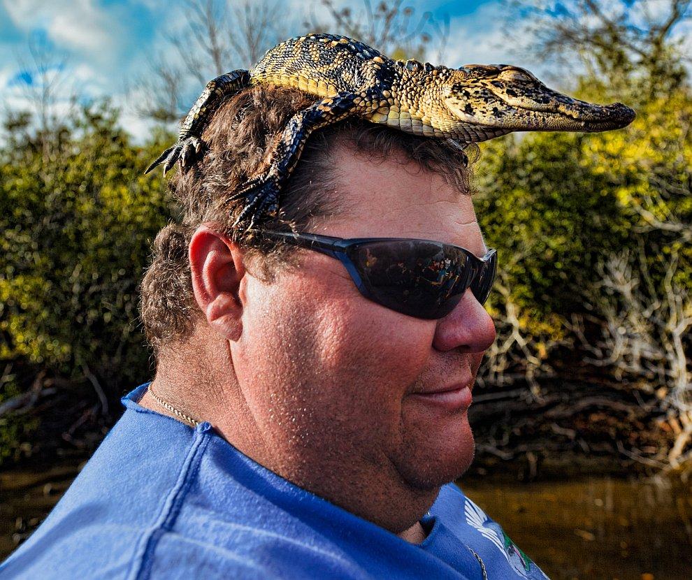 Лодочник из Луизианы со своим домашним животным — аллигатором