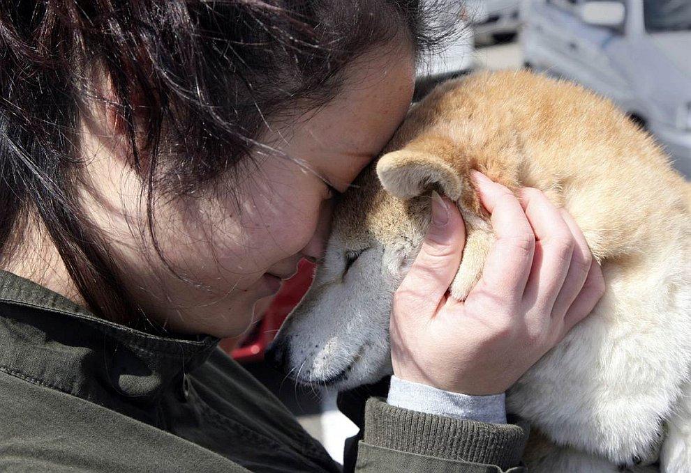 Животные в фотографиях за неделю (20 — 27 марта 2011)