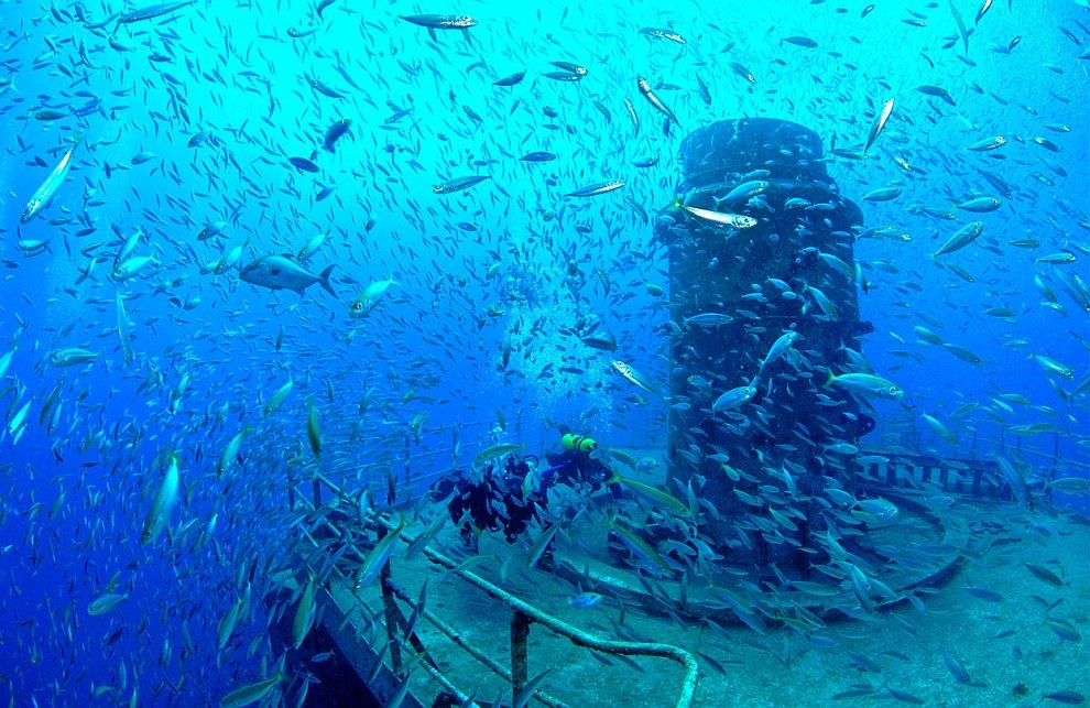 Искусственные рифы