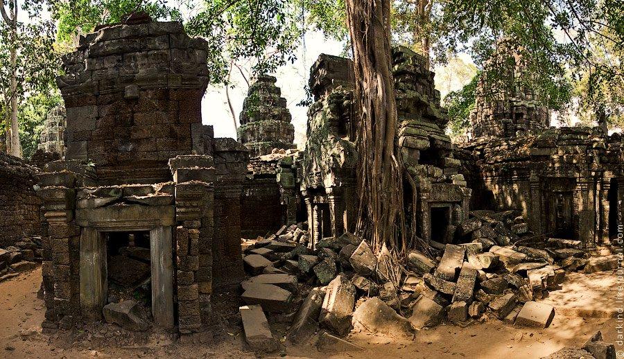 Камбоджийский храм Та Пром (Ta Prohm) и гигантские деревья