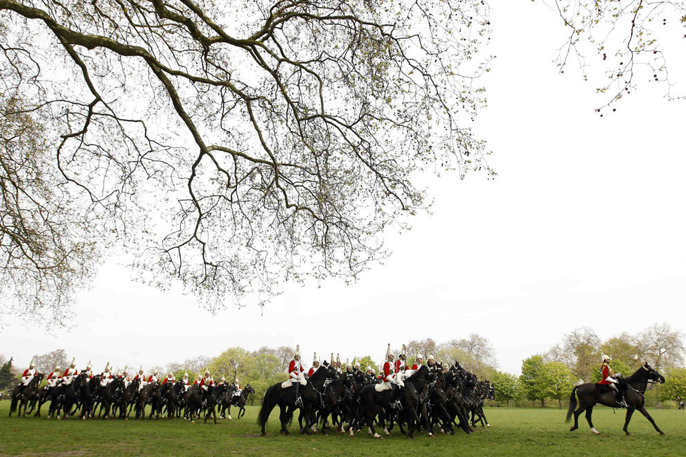 Дворцовая кавалерия британской армии