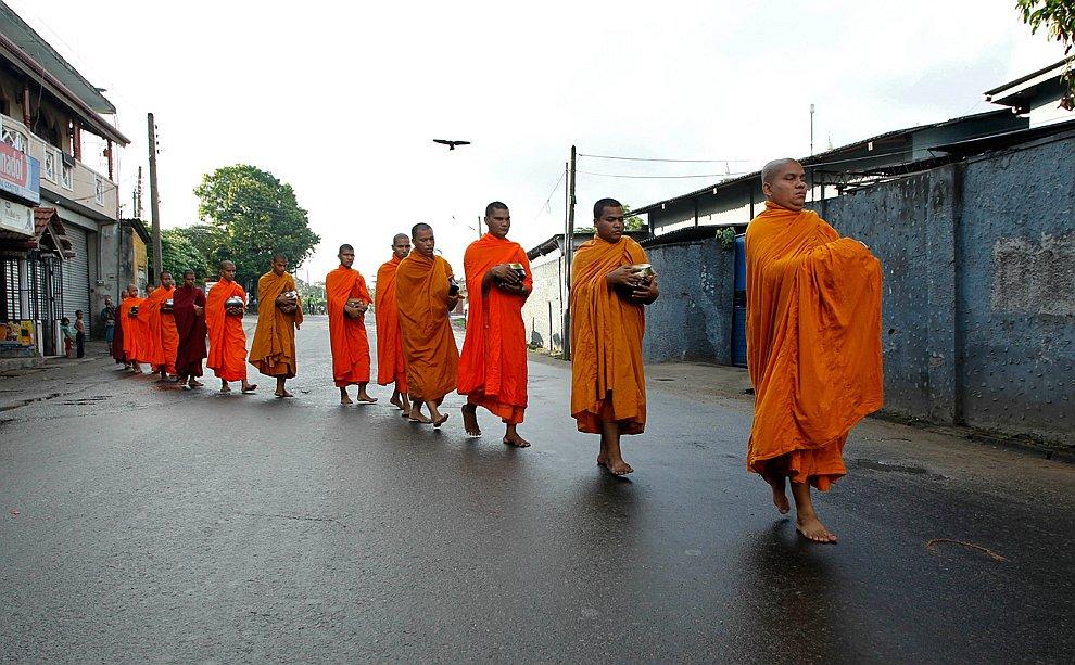 День рождения Будды — красочный праздник