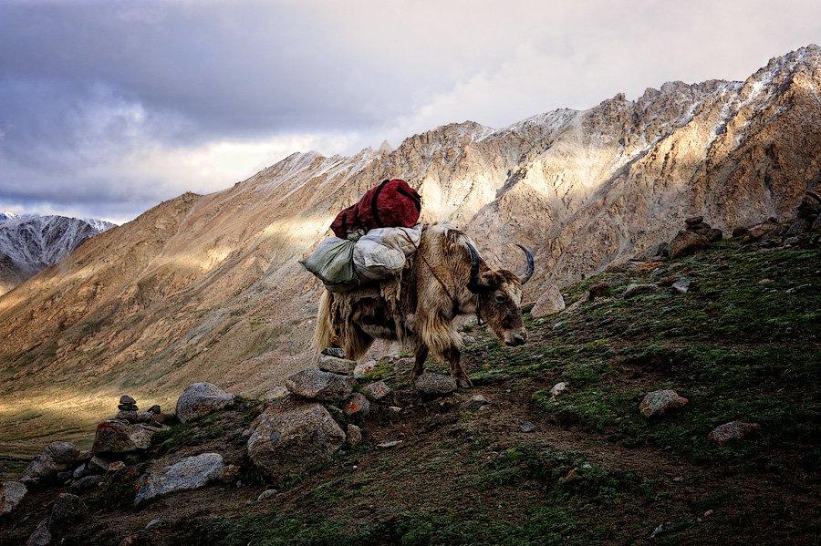 Путешествие в загадочный Тибет. Часть 2