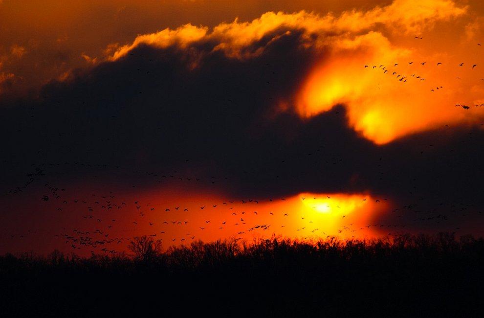 Охотник за бурями: фотографии необычных погодных явлений