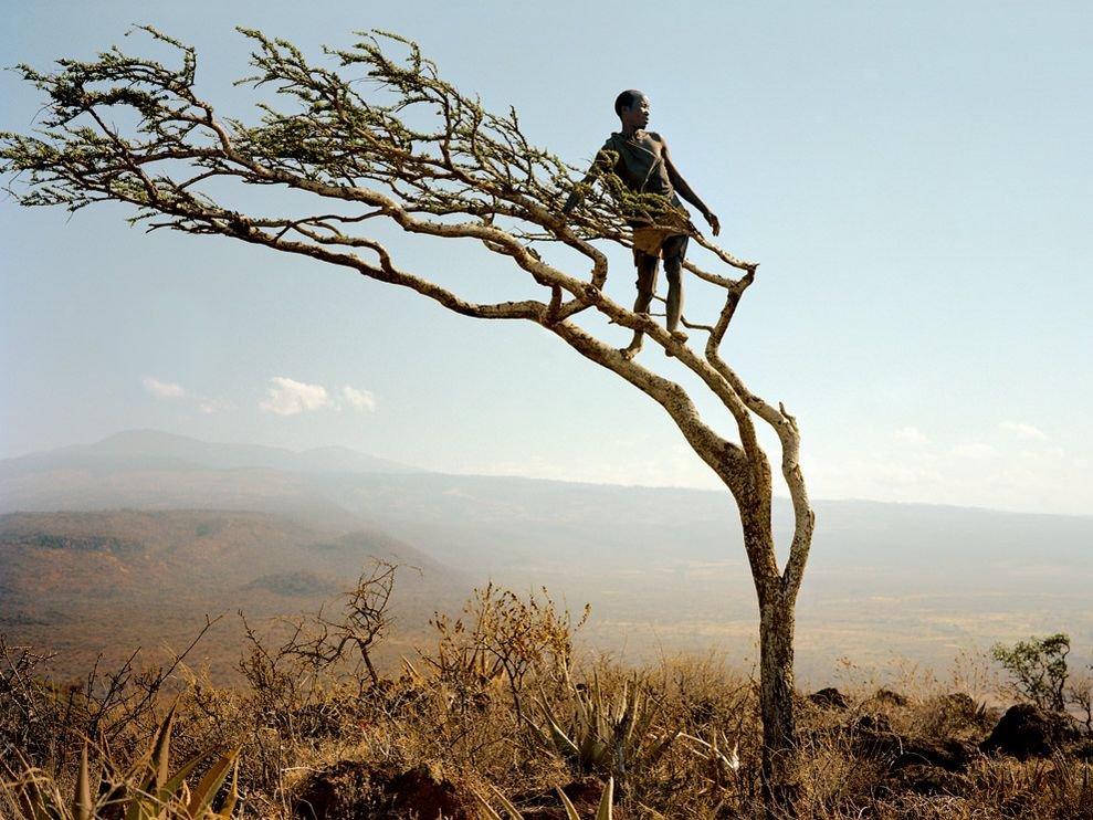 Смотрящий в даль, Танзания