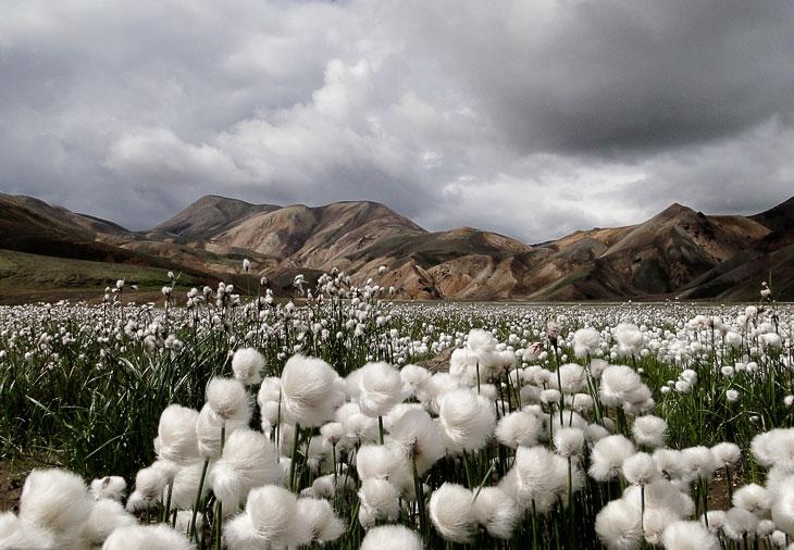 Красивые ландшафты. Часть 3