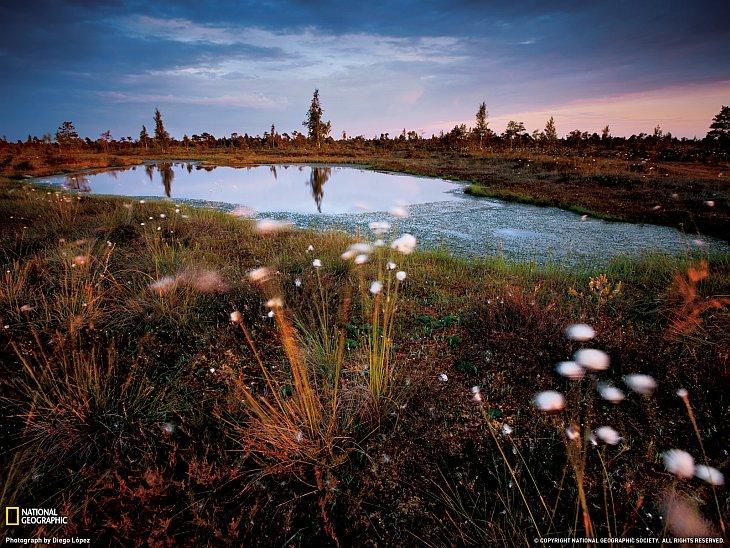 Национальный парк Кемери в Латвии