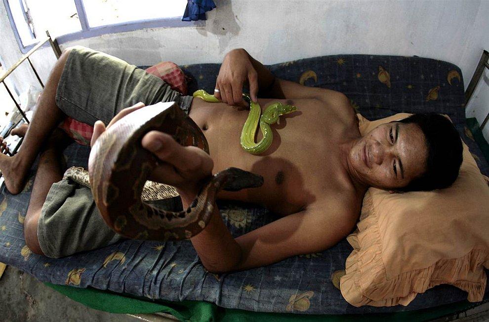 В квартире у этого жителя Индонезии проживает 30 змей