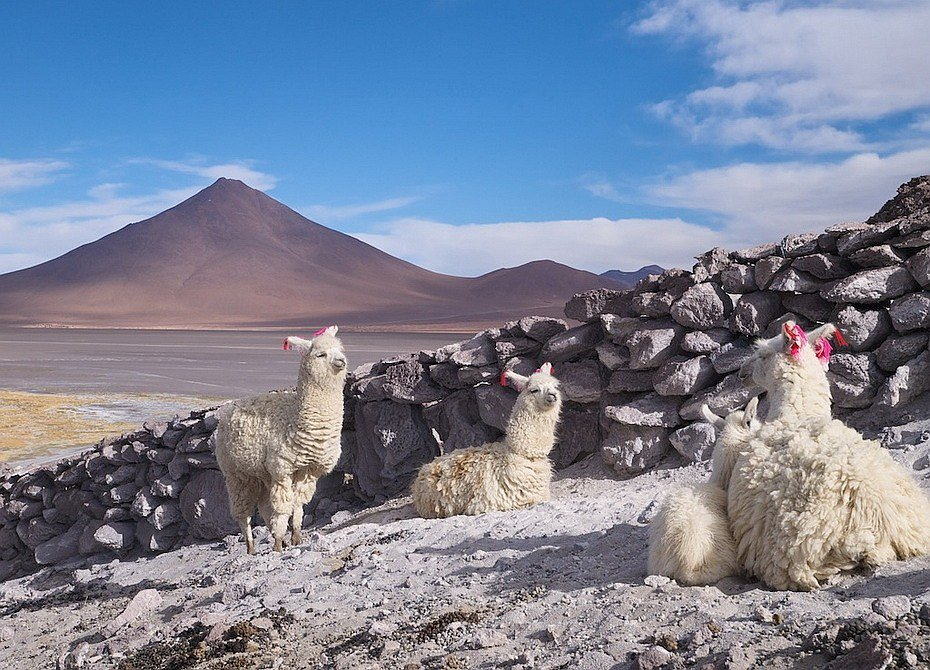 Боливийское чудо: солончак Уюни