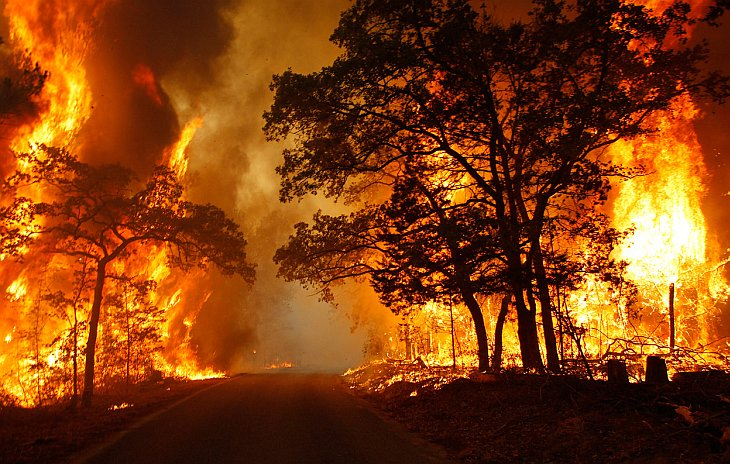 Пожары Скачать Торрент - фото 3