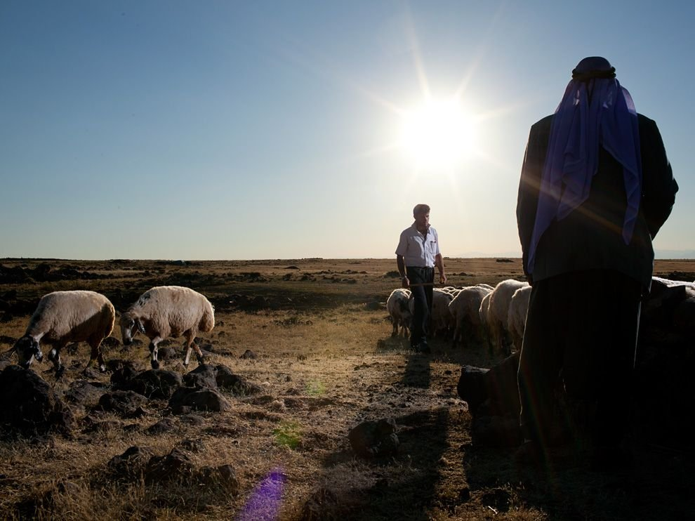 Семья пастухов, Турция