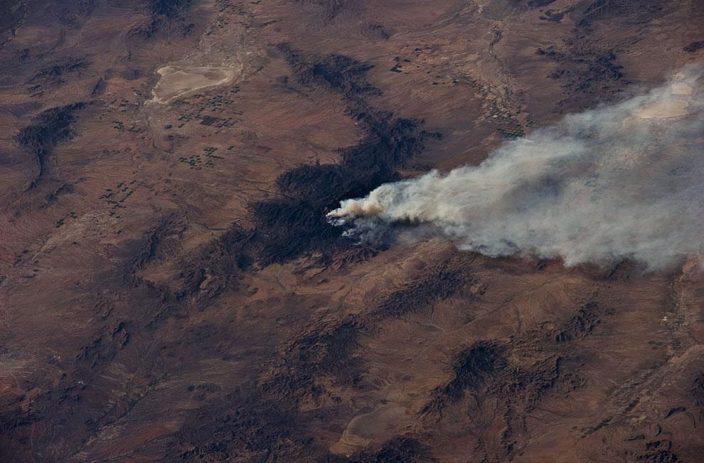 Лесной пожар в штате Аризона