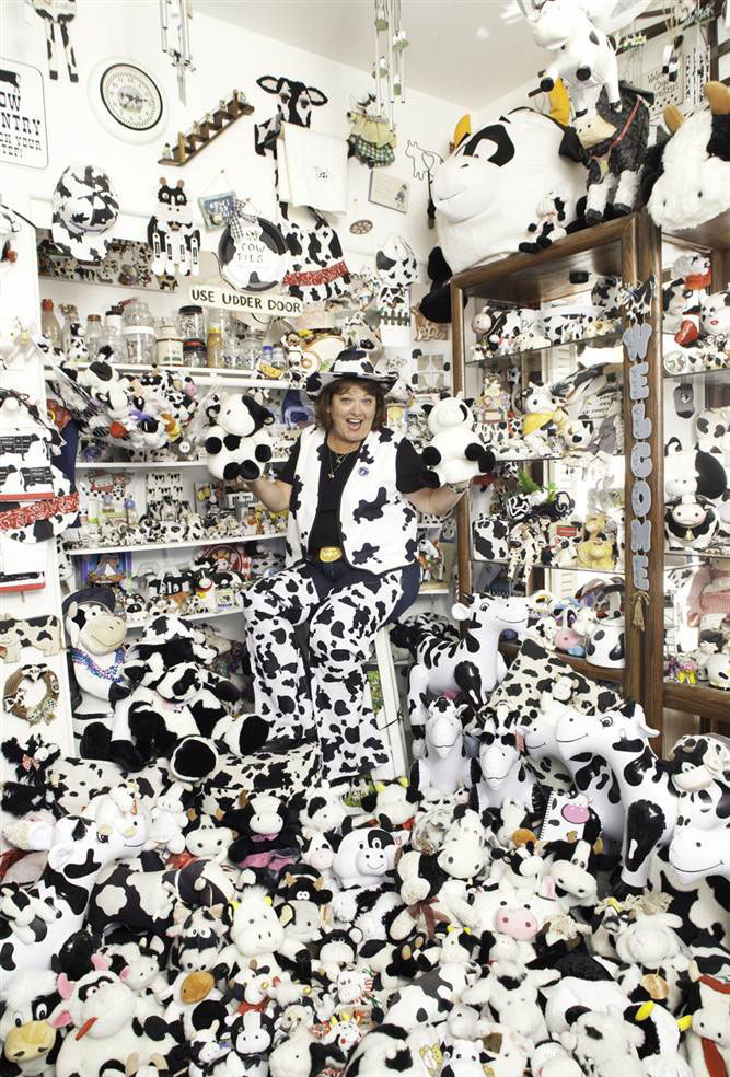 Самая большая коллекция коров