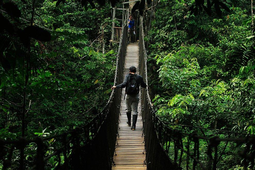 Национальный парк Пакайя-Самирия