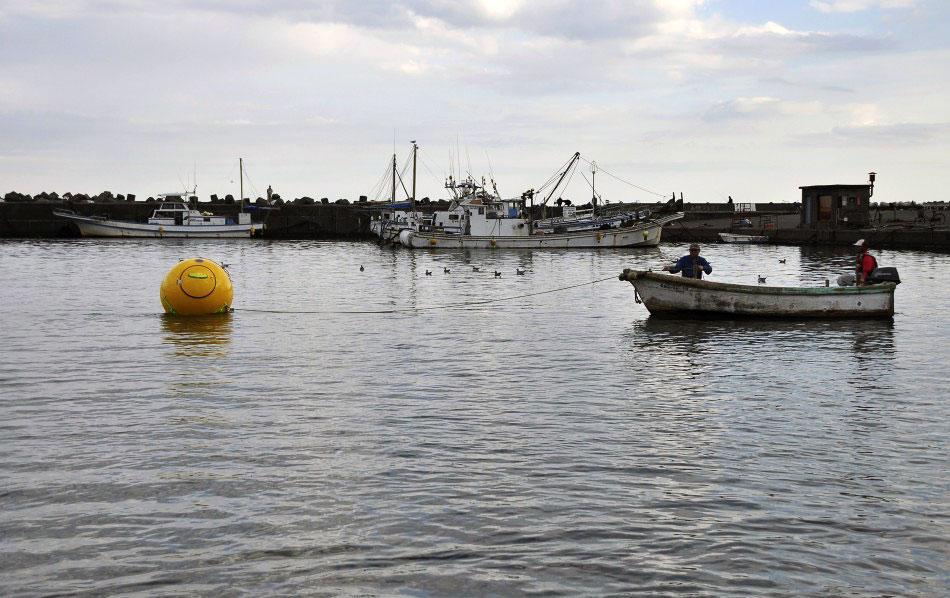 Как спастись от цунами или Ноев ковчег из Японии
