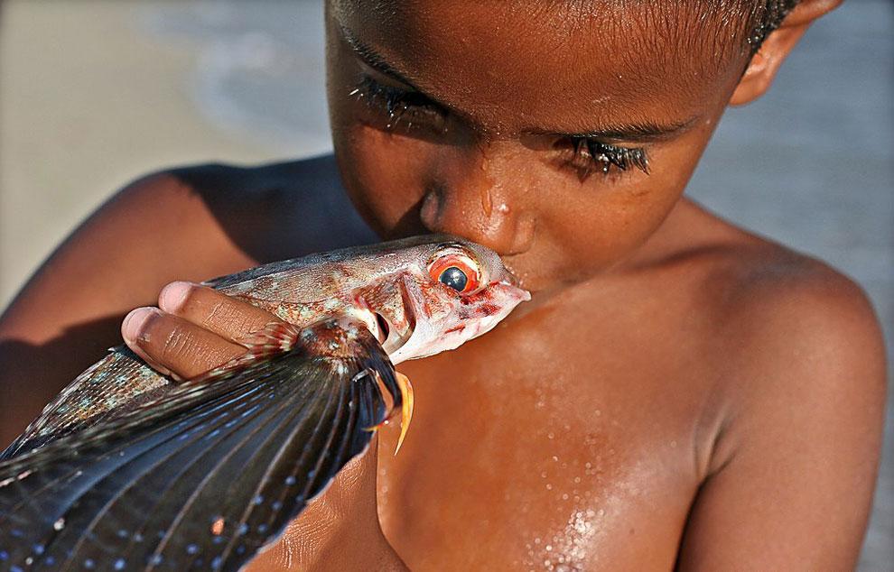 Удивительные летающие рыбы