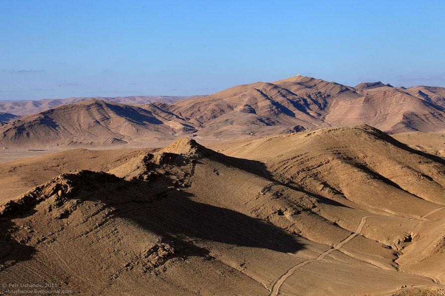 Пальмира — древний город в пустыне