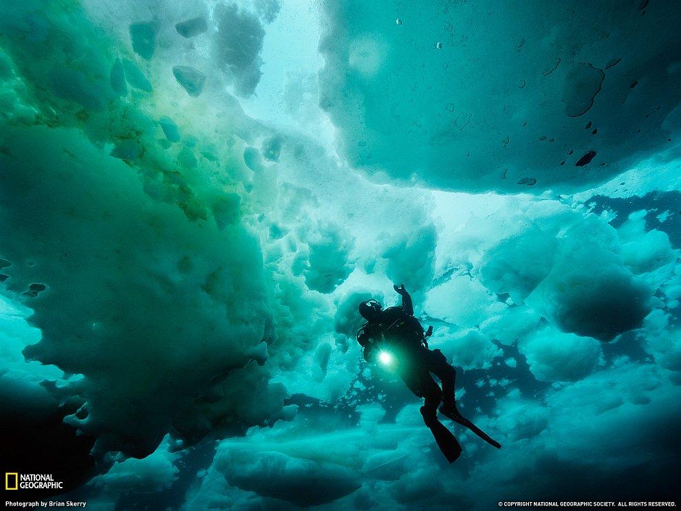 Водолаз среди льдов