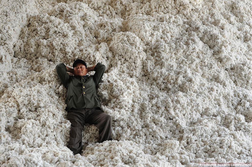 Производство хлопка в Китае